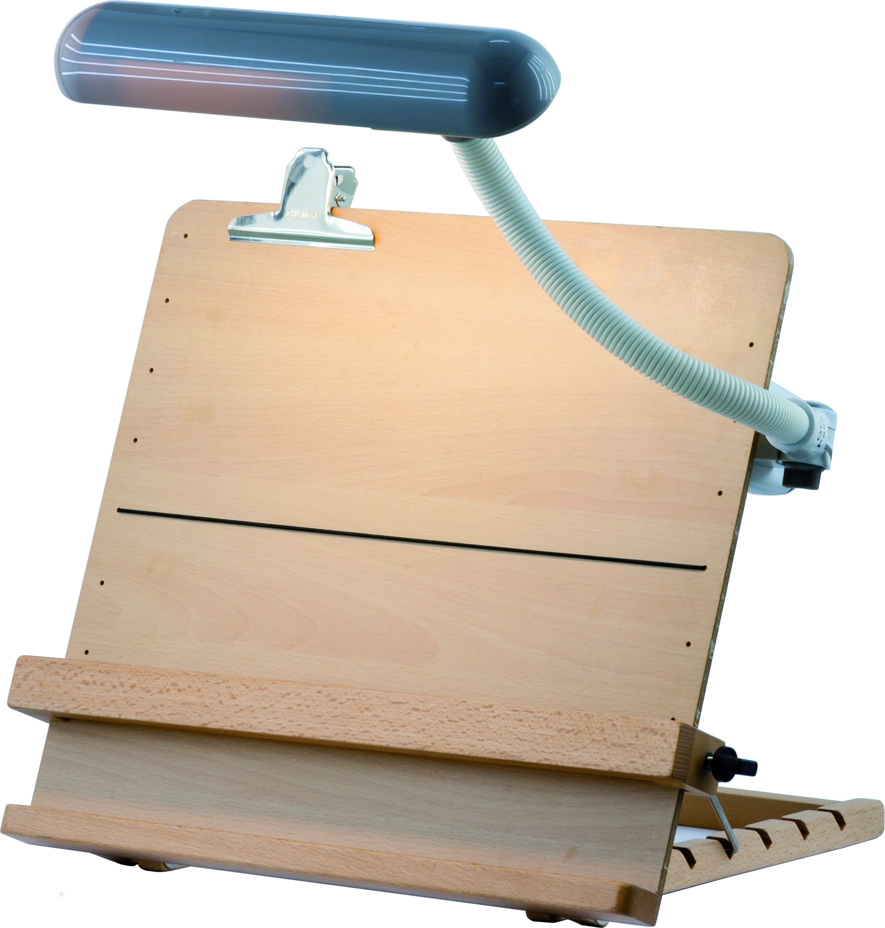 Reading desk with lamp (option)